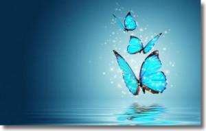 mariposas111.jpeg