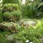 jardin-botanico-cuba